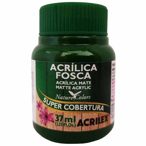 Tinta-Acrilica-Fosca-37ml-513-Verde-Musgo-Acrilex