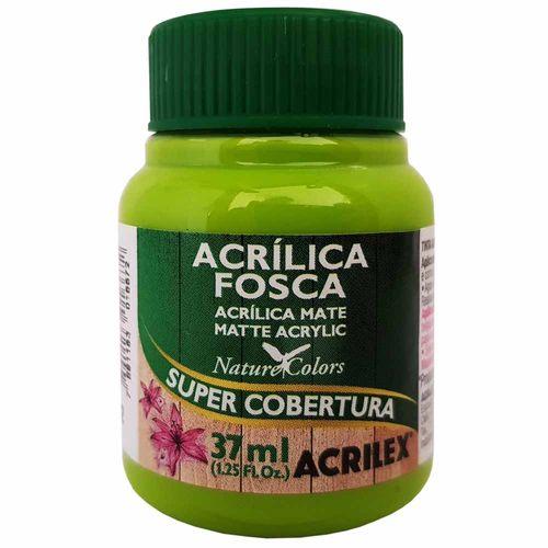 Tinta-Acrilica-Fosca-37ml-802-Verde-Maca-Acrilex