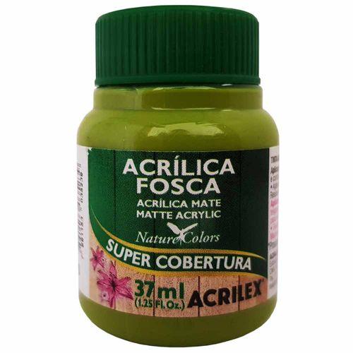 Tinta-Acrilica-Fosca-37ml-570-Verde-Pistache-Acrilex