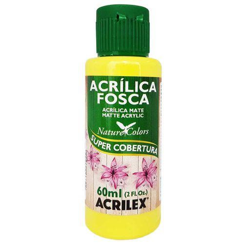 Tinta-Acrilica-Fosca-60ml-504-Amarelo-Limao-Acrilex