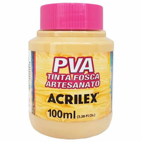 Tinta-PVA-Fosca-100ml-818-Camurca-Queimado-Acrilex